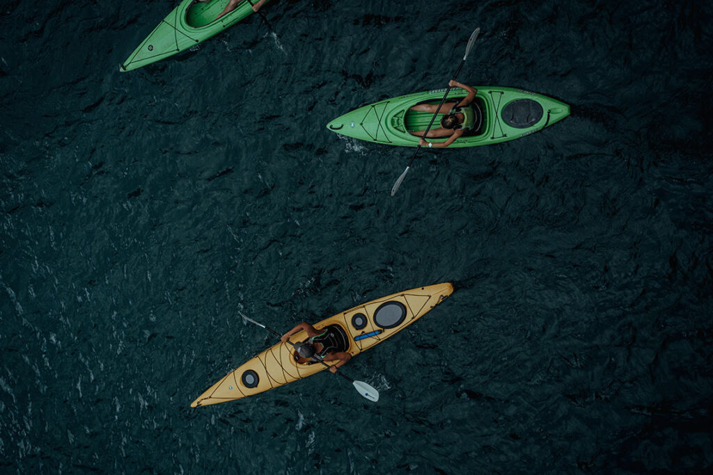 Night Kayak and Bioluminescence Tour